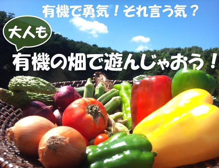 7/7(日) 畑のイベント開催