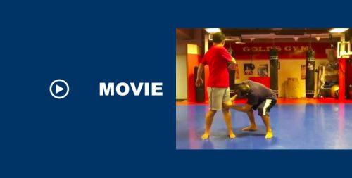 実験 格闘技で狙う急所を動くようにすれば体が元気になる?