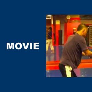 柔術家の剣術