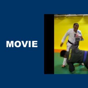 柔術と剣術は同じ原理で別の形