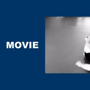 グレイシー柔術とブラジリアン柔術は似て異なる